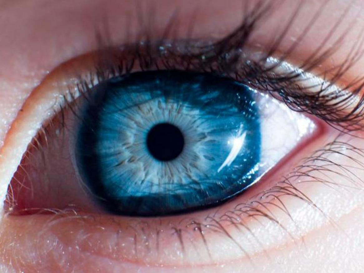 Ophthalmology and Visual Sciences