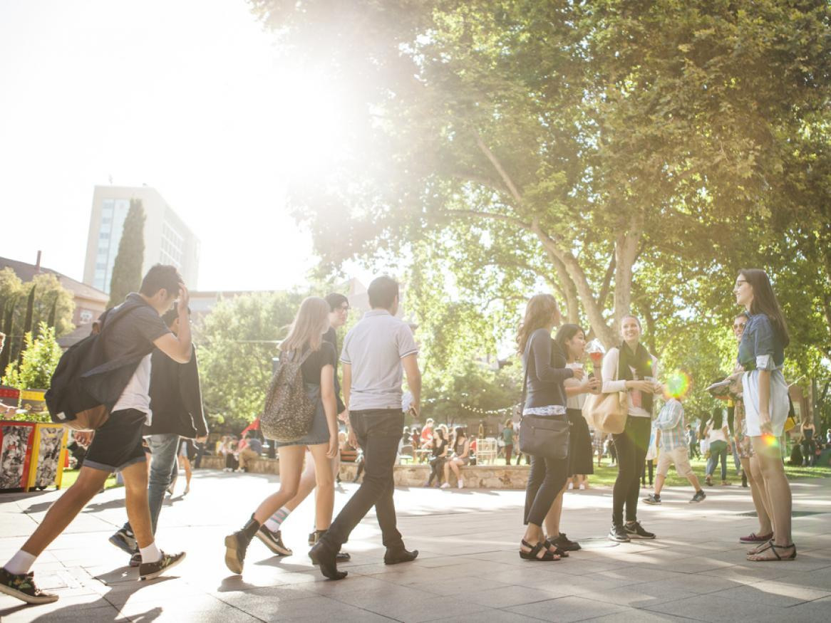 Students walking on campus with sun flare in background